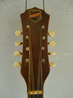 Style 2 Single cone Mandolin Headstock Front