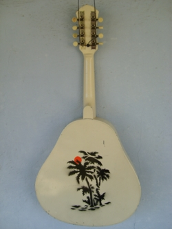 White Triolian  Mandolin Back
